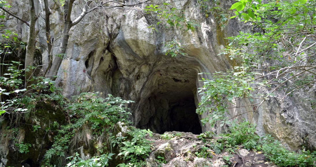 Peștera liliecilor Bran